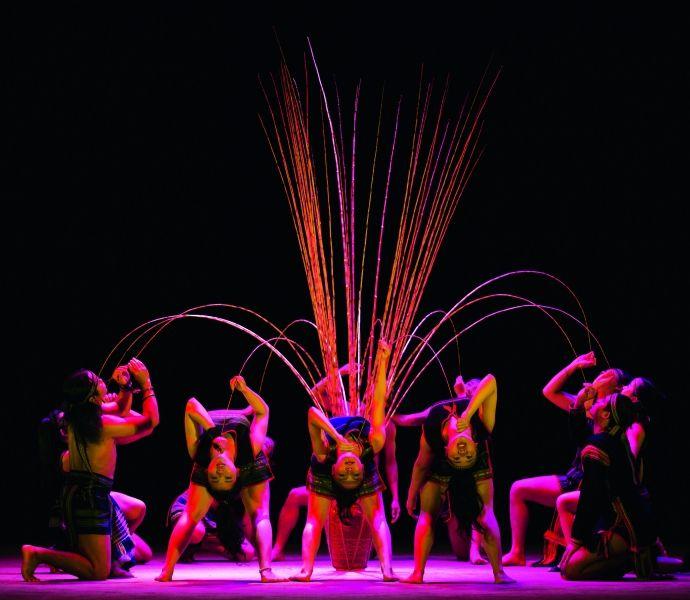 The new Vietnam Circus